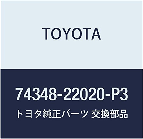 Toyota Genuine 74348-22020-P3 Visor Holder