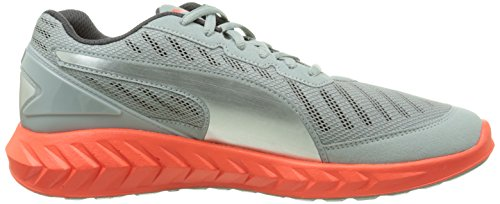 Blast de Gris Red Adulto Ignite Ultimate Unisex Puma Quarry Running Zapatillas qvSgctw