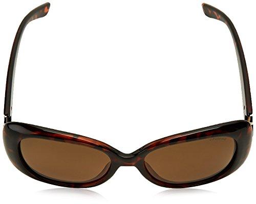 Sonnenbrille PLD Havana 4051 S Brze Marron Polaroid P1xFwq1