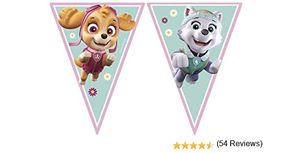 Procos Banner Paw Patrol Skye & Everest, color multicolor (rosa/verde) (91347): Amazon.es: Juguetes y juegos
