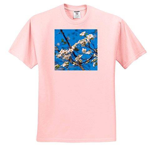 Danita Delimont - Flowers - USA, Georgia, Savannah, Flowering Dogwood - T-Shirts - Youth Light-Pink-T-Shirt Small(6-8) (TS_259214_44)