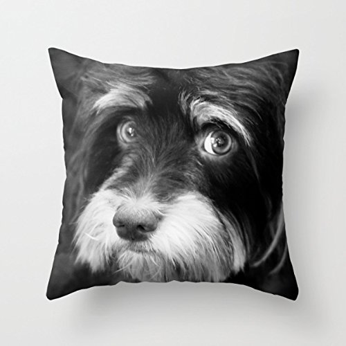 [Artistdecor 20 X 20 Inches / 50 By 50 Cm Dogs Cushion Covers ,twice Sides Ornament And Gift To Car] (Diy Sushi Dog Costume)