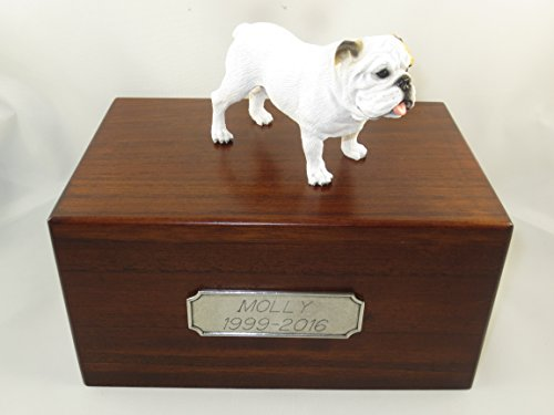 Beautiful Paulownia Medium Wooden Urn with White Bulldog Figurine & Pewter Personalized (Bulldogs White Ceramic)