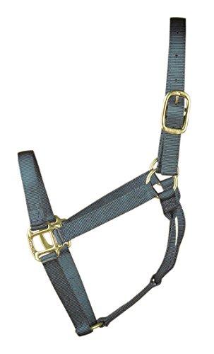 Hamilton 1-Inch Nylon Quality Halter for 800 to 1100-Pound Horse, Average, Graphite ()