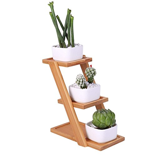 2.8 Inch Small Modern Decorative White Square Ceramic Succulent Plant Pots Indoor with Drainage are made from kaolin clay with Moso Bamboo Tray for Home Office Desk and Garden (Lucky Bamboo Pot)