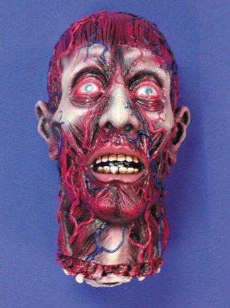 Skinned Head (Head Skibrille)