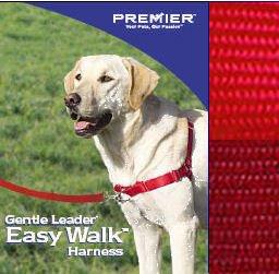 PREMIER Small/Medium Red Easy Walk ()