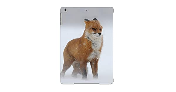 Amazon.com: [jxeQRW-4266-DBmHm]premium Phone Case For Ipad ...