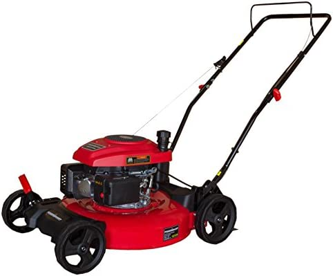 DB2194C 21 2-in-1 161cc Gas Push Lawn Mower