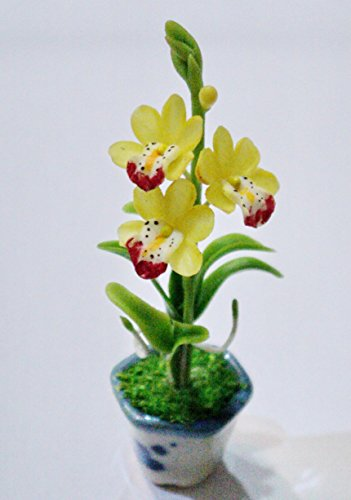 Dollhouse Miniatures Handmade Clay Flower Plant Pot Garden Supply Home Decor # - Dot Sunglasses Three