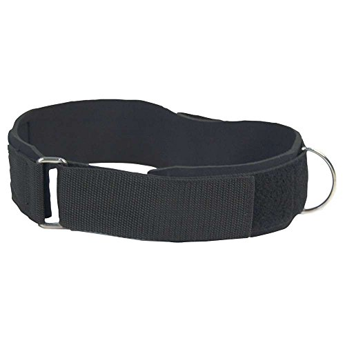 Thigh Strap, Strength Training Attachment for Weights or Resistance Bands, 34 x 2.5 Inches, Black (50750) (2.5in System)