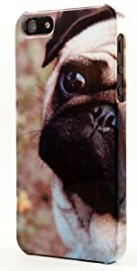 Pet Canine Pug Dog Dimensional Case Fits iPhone 5 or iPhone 5s