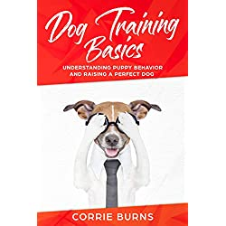 Dog Training Basics: Understanding Puppy Behavior and Raising a Perfect Dog