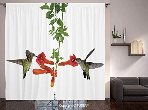 Nectar Vineyards (PUTIEN Thermal Insulated Blackout Window Curtain [ Hummingbirds Decor,Two Hummingbirds Sip Nectar from a Trumpet Vine Blossoms Summertime, for Living Room Bedroom Dorm Room Classroom Kitchen Cafe)