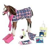 Our Generation  Quarter Horse Foal