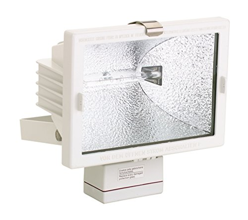 HELLA H16980001 'H169 Series' 120V AC Halogen Deck Floodlight with White Housing