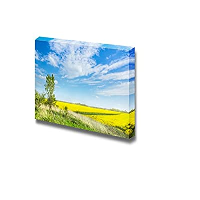 Beautiful Scenery Landscape Hill with Young Poplar Amides Blooming Rape Fields and Blue Sky Wall Decor, Premium Product, Fascinating Visual