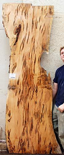 Ambrosia Maple Wood Slab Bartop Natural Wooden Countertop Live Edge Sideboard DIY Custom Console Media Shelf Rustic Furniture Raw 6504x1