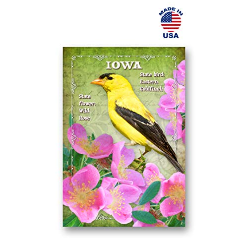 IOWA BIRD AND FLOWER postcard set of 20 identical postcards. IA state symbols post cards. Made in USA.