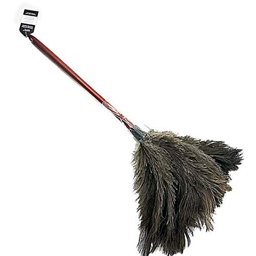 Top 10 Ostrich Feather Dusters For Sale Of 2019 No Place