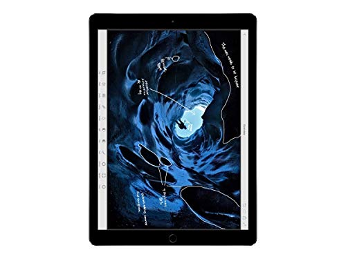 Apple iPad Pro (128GB, Wi-Fi + Cellular, Space Gray) 12in Tablet (Renewed)