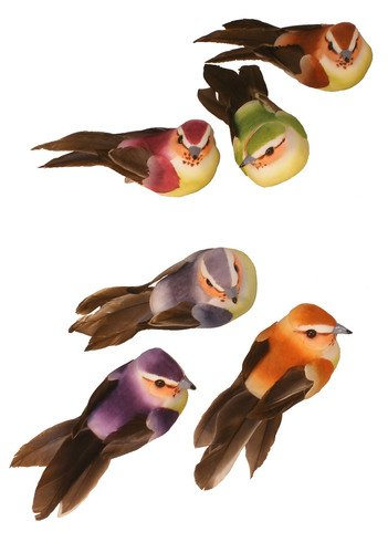 Sweet Mushrooms (Package of 12 Sweet and Delicate Real Feather Mushroom Birds in Assorted Colors for Crafting and Designing)