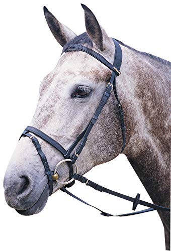 Wintec Bridle with Flash Horse Black