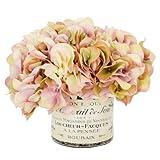 Green Hydrangea Bouquet in a French Label Pot Color: Mauve / Cream