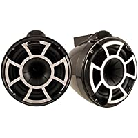 Wet Sounds Revolution Series 10 inch HLCD Wakeboard Tower Speakers - Black w/ X Mount Kit
