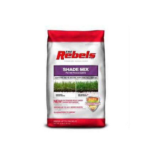 Pennington 100081775 The Rebels Tall Fescue Shade Grass Seed Mix, 3-Pound