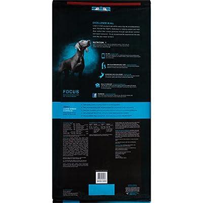 Purina Pro Plan Focus Large Breed Formula Adult Dry Dog Food - 34 Lb. Bag