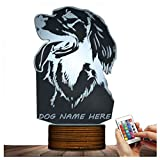 Novelty Lamp, Night Light Irish Setter Optical Illusion 15 Kinds of Discoloration 3D LED Lamp, USB Powered Remote Control Changes the Color of the Light, an Ideal Gift for Children's Friends and Famil