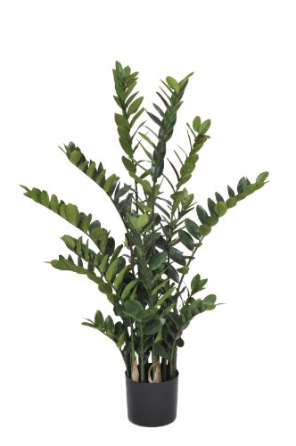 House-of-Silk-Flowers-Artificial-Zamioculcas-Zanzibar-Gem-45-Feet