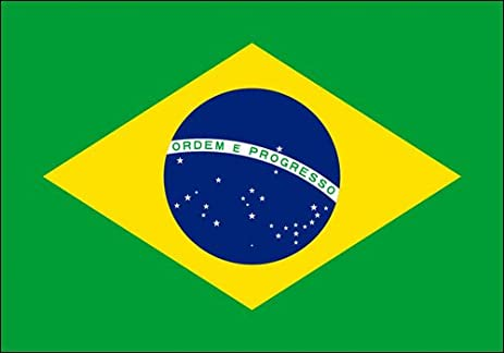 Brazil flag sticker brasil brazilian decal