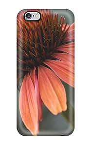 3690677K95141205 For Iphone 6 Plus Fashion Design Echinacea Sundown Case