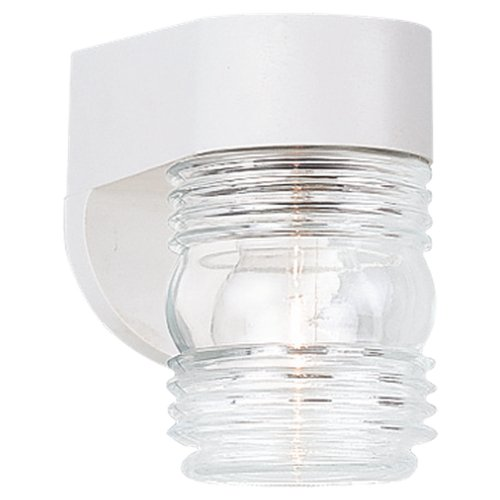 Sea Gull Lighting 8750-15 Single-Light Outdoor Wall Fixture with Clear Ribbed Glass, White Polycarbonate (15 White Ribbed Glass)