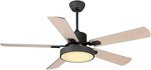 Ceiling fan light 42