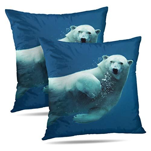 Arctic Ocean Underwater Camera - 1