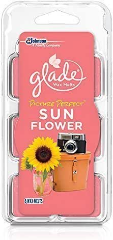 Glade Wax Melts Picture Perfect Sun Flower, 6 Count (2 Pack) by Glade