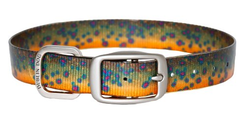 Dublin Dog Koa Collection Trout Series 12.5 by 17-Inch Dog Collar, Medium, Brook Trout