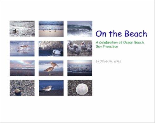 On the Beach: A Celebration of Ocean Beach, San Francisco pdf