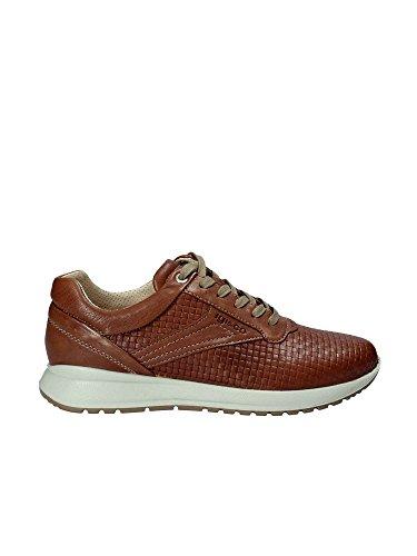 IGI Co 1120 Sneakers Man Brown buy cheap amazon 2014 cheap online cheap nicekicks 100% guaranteed discount choice zZkS1CL