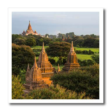 3dRose Danita Delimont - Myanmar - Temples and pagodas Rising from The Jungle, Bagan, Mandalay, Myanmar - 8x8 Iron on Heat Transfer for White Material (ht_312594_1)