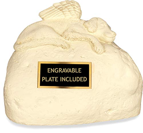 Angelstar 49561 Pet Urn for Dog with Engraved Name Plate, 6-Inch ()