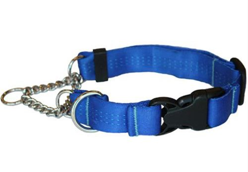 Canine Equipment Technika 1-Inch Quick Release Martingale Dog Collar, Large, Blue