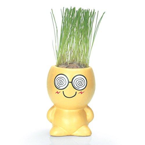 Funny Emoji Face Artificial Grass Decor Potted Magic DIY Stress Reliever Grass Head Doll Small Ceramic Flower Pots Mini Succulent Planter Topiary Plants Stand