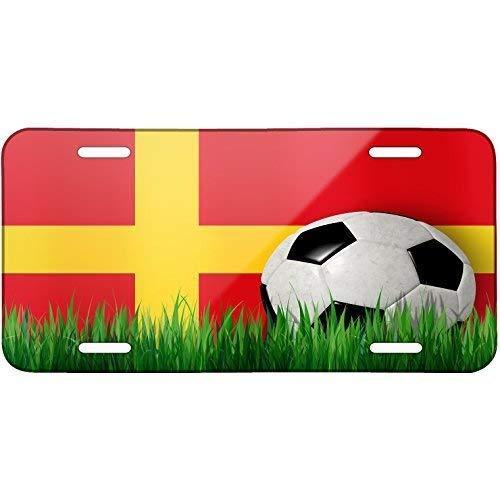 ClustersNN Soccer Team Flag Alsace (Alsace) Region France Metal License Plate 6X12 Inch