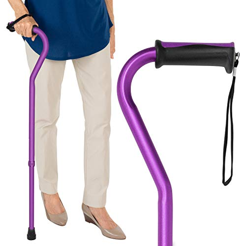 Vive Walking Cane for