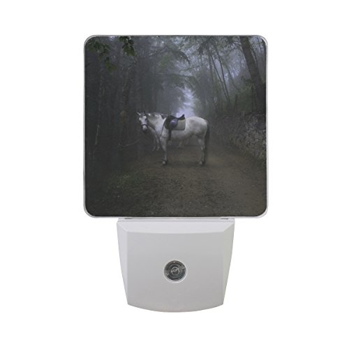 Naanle Set Of 2 Unicorn Horse Fantasy Fog Forest Auto Sensor