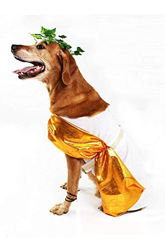 Midlee Toga Dog Costume (Large)]()